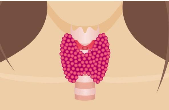 Cuộc sống đầy khủng hoảng của những phụ nữ bị bệnh tuyến giáp: Mất kinh nguyệt, tăng 20kg trong 2 tháng... và dấu hiệu cảnh báo cần đi khám ngay - Ảnh 1.