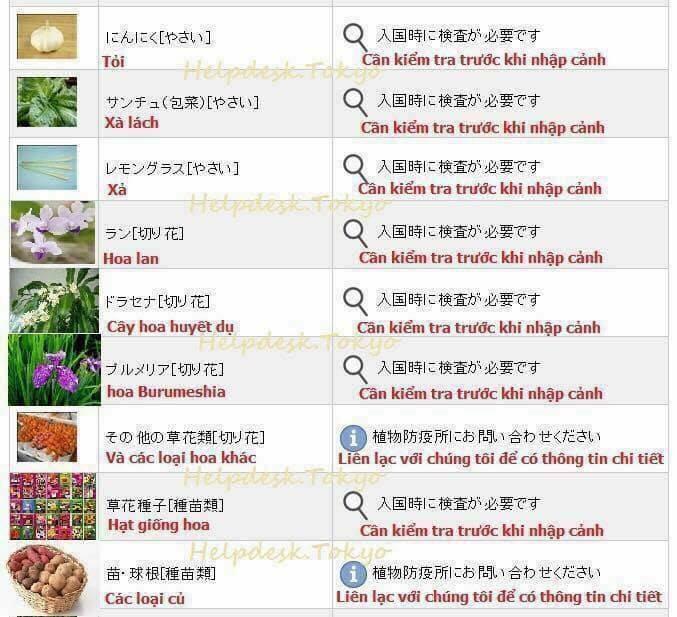 Hải quan Nhật Bản áp dụng luật cấm: Du học sinh, khách du lịch không được mang theo đồ ăn, hoa quả khi nhập cảnh - Ảnh 4.