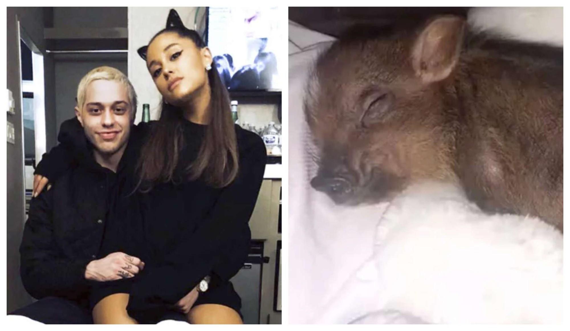 Có cả rổ hình xăm tình yêu với nhau, bạn trai cũ Ariana Grande đã bắt đầu xử lý một trong số đó sau khi chia tay - Ảnh 5.