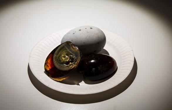 4 món ăn cực quen thuộc của Việt Nam bất ngờ xuất hiện trong bảo tàng những món ăn kinh dị tại châu Âu 4