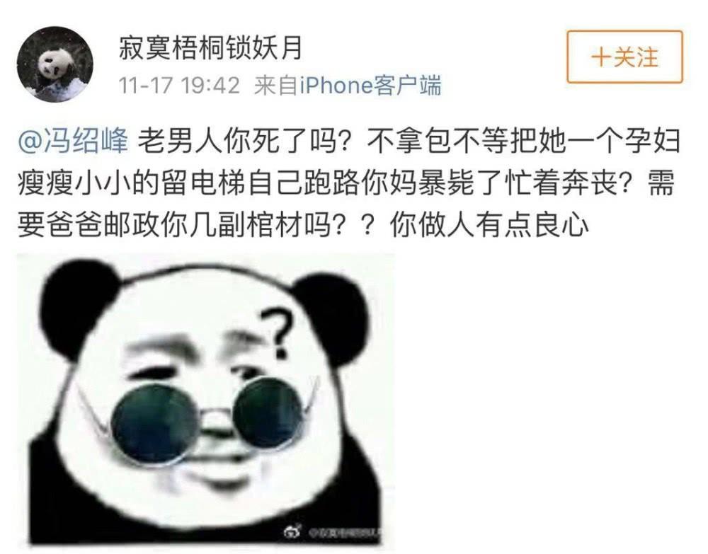 Phùng Thiệu Phong bị chỉ trích vì không nắm tay, cầm túi hộ bà xã Triệu Lệ Dĩnh đang mang bầu? - Ảnh 6.