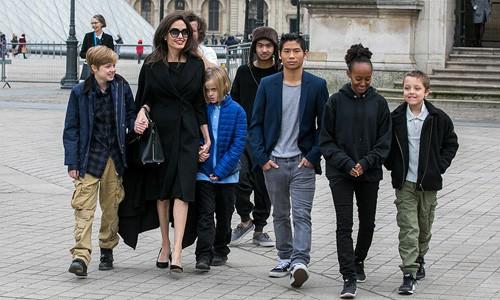 Cuối cùng, Brad Pitt cũng đã được chia sẻ quyền nuôi con như mong muốn - Ảnh 2.