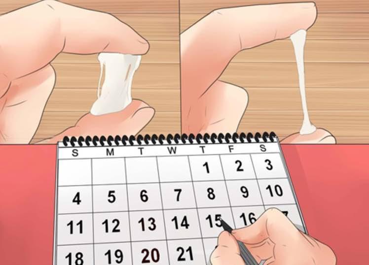Không biết tính ngày rụng trứng thì vẫn có 6 dấu hiệu giúp bạn nhận biết chu kỳ này - Ảnh 2.