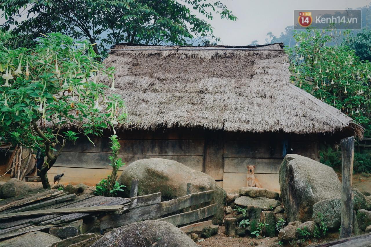 Có một Tây Bắc ở Nghệ An vô cùng khắc nghiệt nhưng lại rất nên thơ - Ảnh 5.