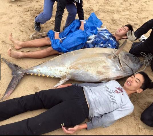 Không có dụng cụ, 2 học sinh cấp III ở Nhật tay không đấm ngất con cá ngừ nặng 1 tạ - Ảnh 2.