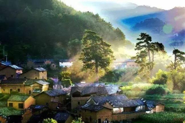 Cặp vợ chồng trẻ quyết tâm rời phố thị về sống trong ngôi nhà ấm cúng, làm bạn cùng mây núi - Ảnh 6.