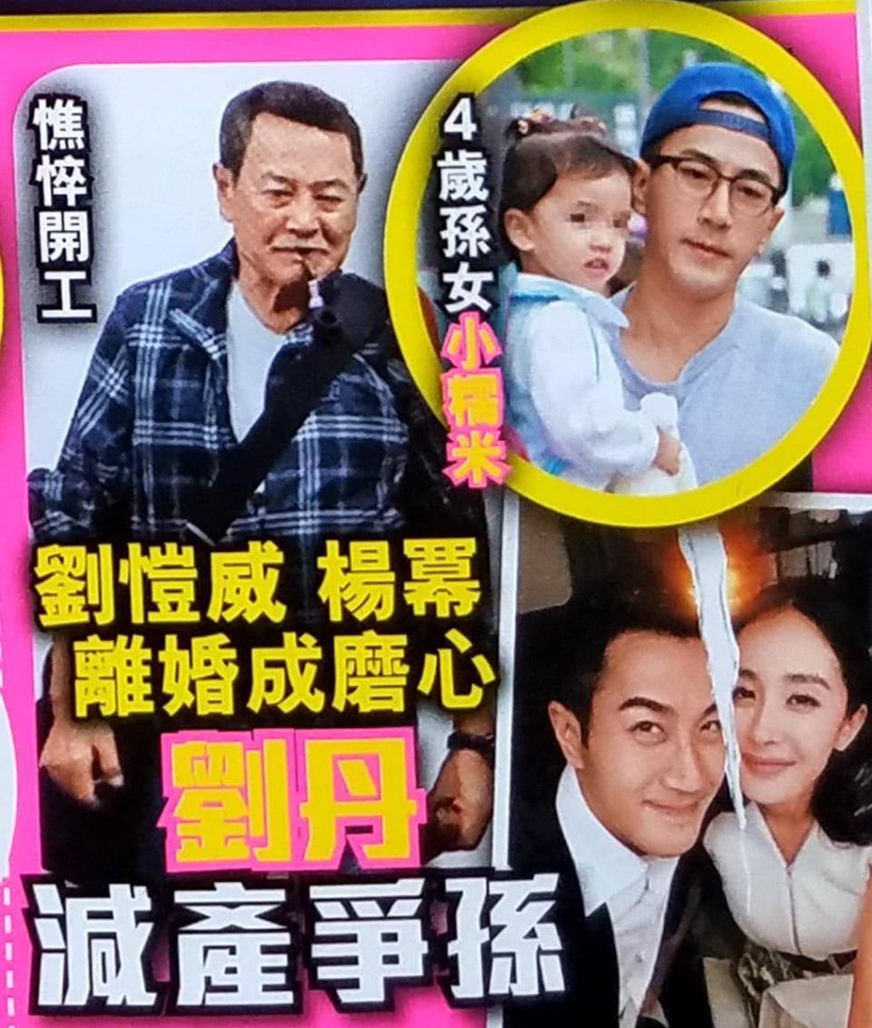 Sợ Dương Mịch giành quyền nuôi con, bố Lưu Khải Uy vội vã giảm bớt công việc để chăm cháu - Ảnh 2.