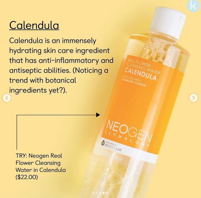 Gợi ý 3 sản phẩm giúp kiềm mụn lại vừa giúp da căng bóng đẫy đà dành cho nàng da thường - Ảnh 5.