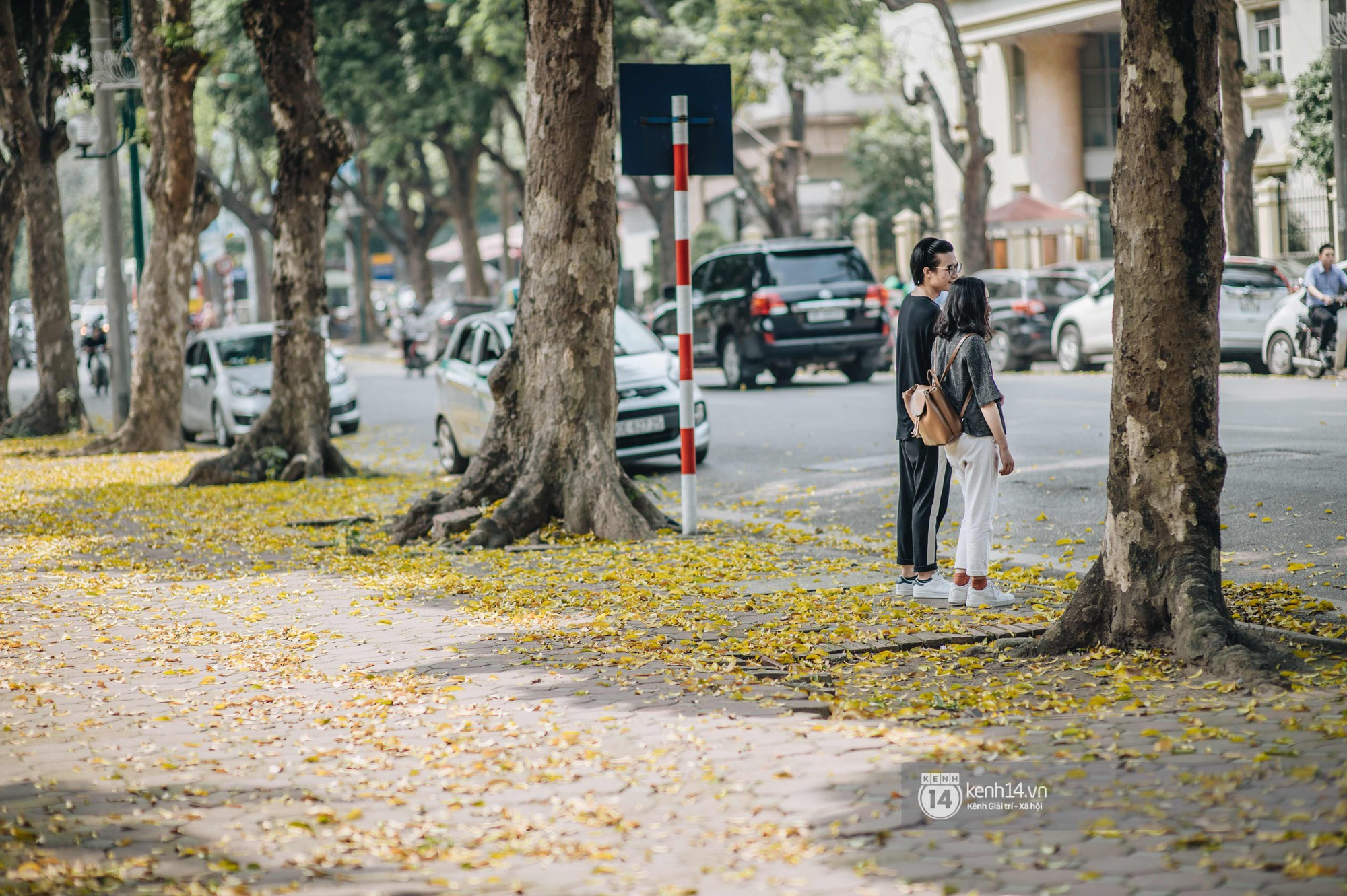 Hà Nội mùa lá rụng: Khi mọi thứ bỗng trở nên đẹp hoàn hảo như một thước phim! - Ảnh 8.