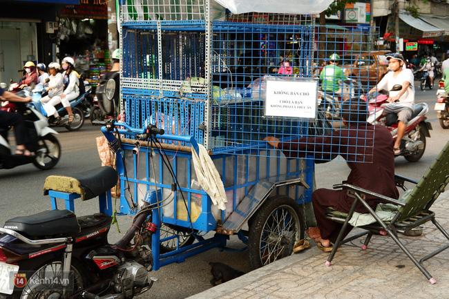 Tấm bảng Chó là bạn, không phải thứ ăn của người đàn ông 20 năm bầu bạn với những chú chó ngoài đường phố Sài Gòn - Ảnh 5.
