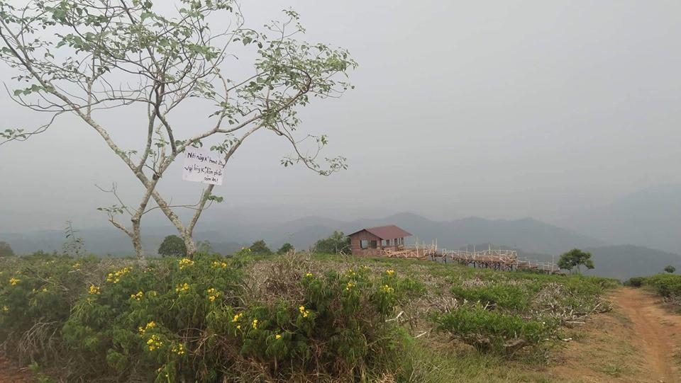 Cầu gỗ săn mây nổi tiếng ở Đà Lạt nhiều lần cấm khách tham quan: Lý do vì đâu nên nỗi? - Ảnh 4.