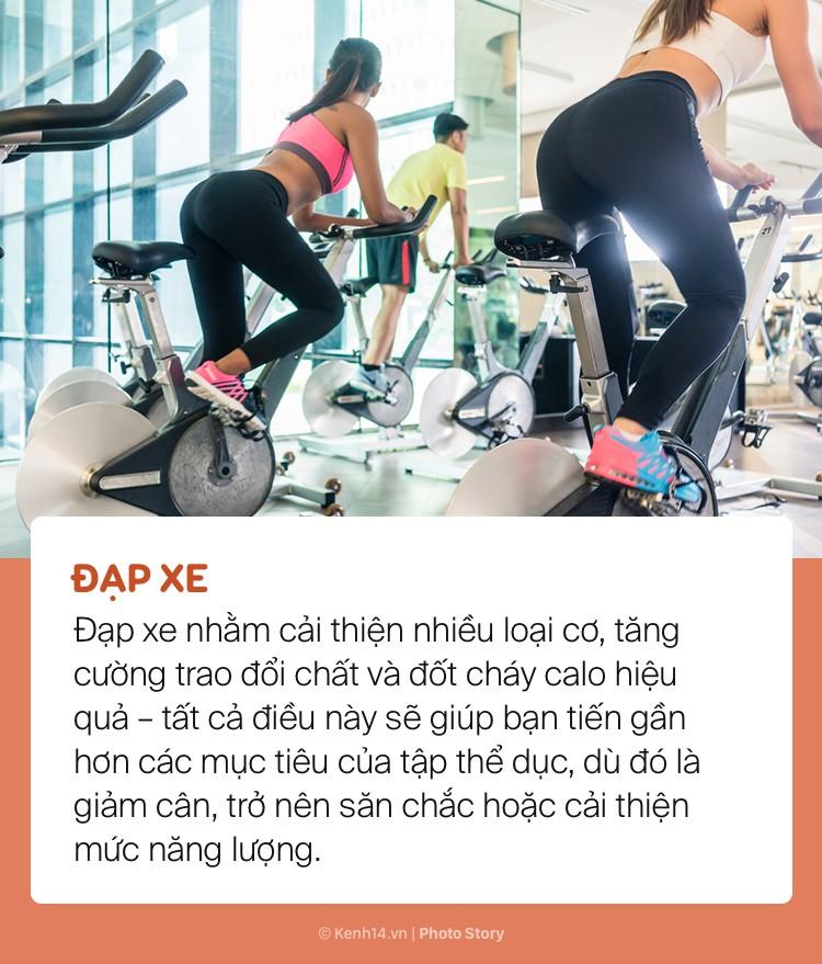 Nếu chán tập gym hãy thử bài những tập này giúp giảm cân hiệu quả - Ảnh 5.
