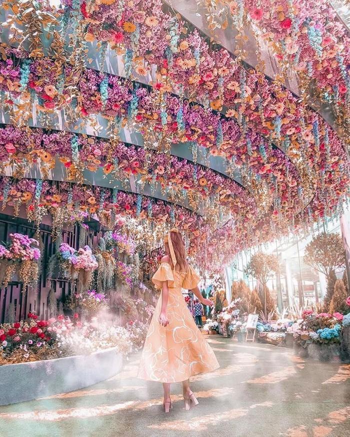 """Sau Jewel Changi, Singapore lại có thêm """"kỳ quan"""" vườn hoa treo khổng lồ khiến dân tình phải ngước lên """"mỏi cả cổ"""" để ngắm nhìn - Ảnh 2."""