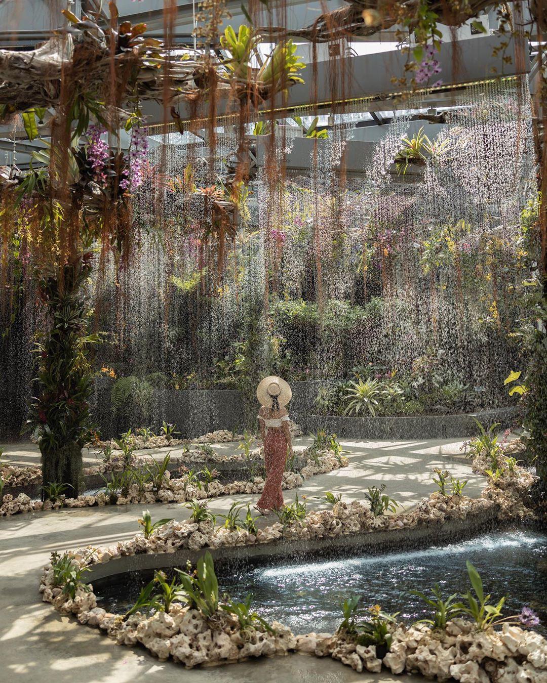 """Sau Jewel Changi, Singapore lại có thêm """"kỳ quan"""" vườn hoa treo khổng lồ khiến dân tình phải ngước lên """"mỏi cả cổ"""" để ngắm nhìn - Ảnh 9."""