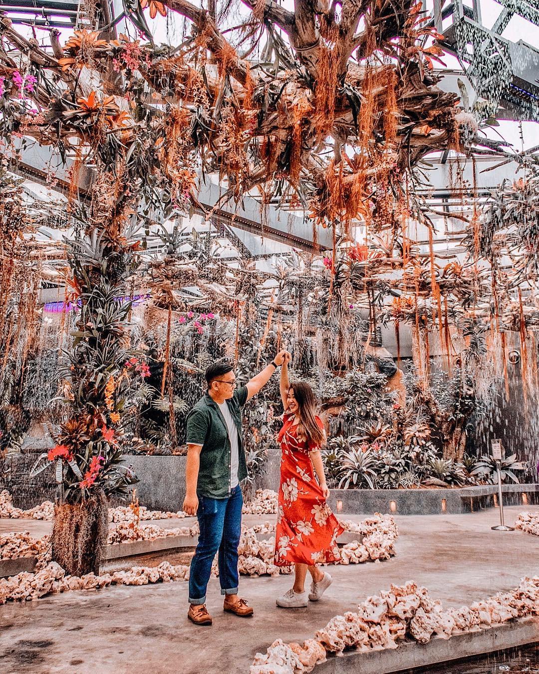 """Sau Jewel Changi, Singapore lại có thêm """"kỳ quan"""" vườn hoa treo khổng lồ khiến dân tình phải ngước lên """"mỏi cả cổ"""" để ngắm nhìn - Ảnh 16."""