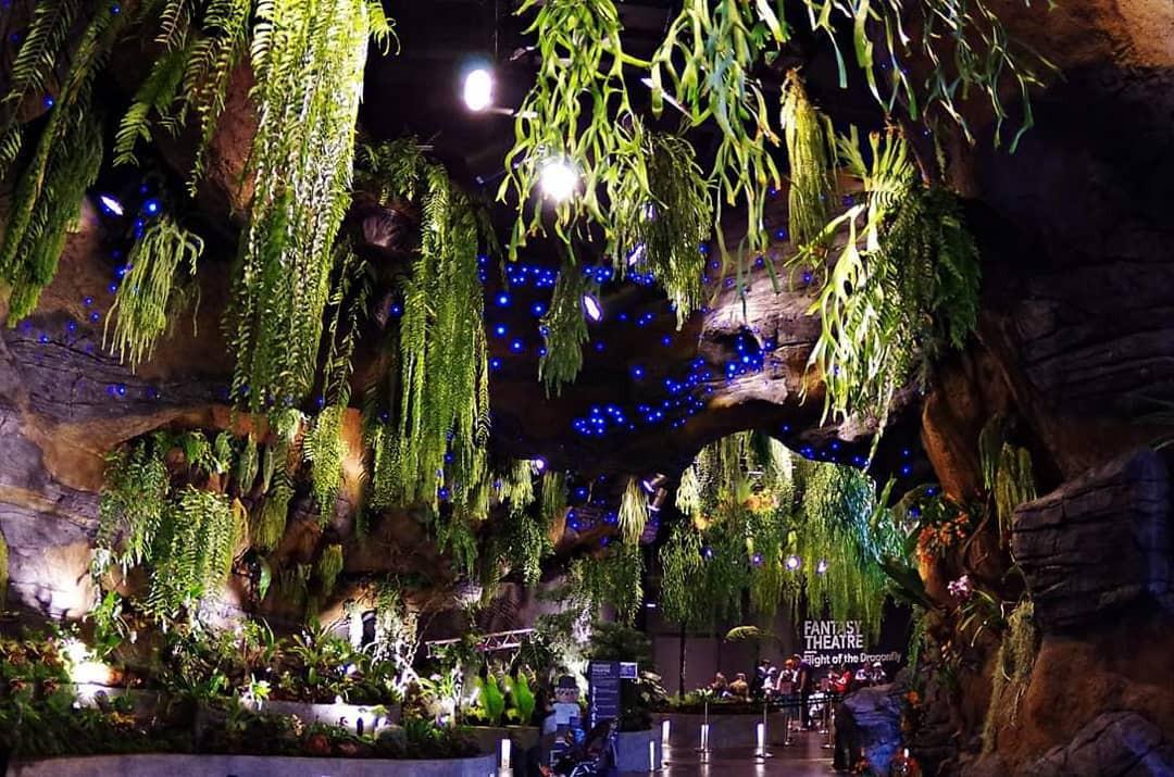 """Sau Jewel Changi, Singapore lại có thêm """"kỳ quan"""" vườn hoa treo khổng lồ khiến dân tình phải ngước lên """"mỏi cả cổ"""" để ngắm nhìn - Ảnh 14."""