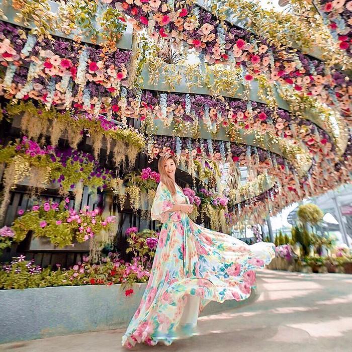 """Sau Jewel Changi, Singapore lại có thêm """"kỳ quan"""" vườn hoa treo khổng lồ khiến dân tình phải ngước lên """"mỏi cả cổ"""" để ngắm nhìn - Ảnh 19."""