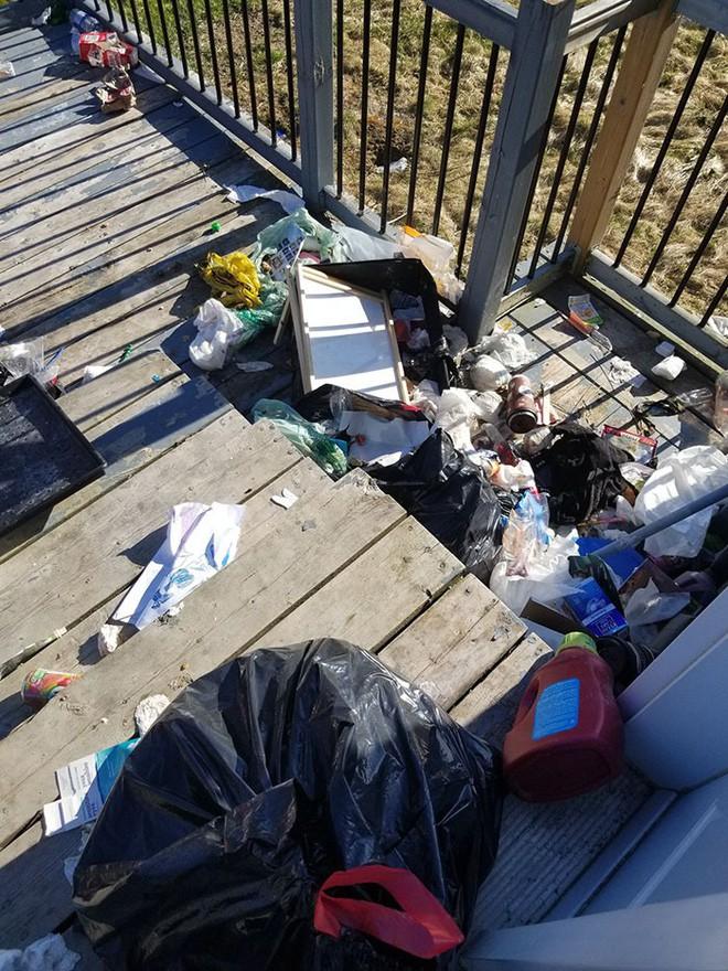 Canada: Bắt quả tang gấu hối lộ xương cho chó để vào nhà dân bới thùng rác - Ảnh 5.