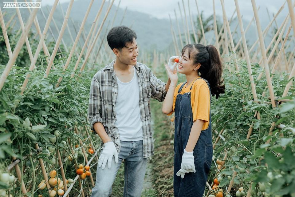 Ảnh 6: Kỷ yếu concept nông trại - We25.vn