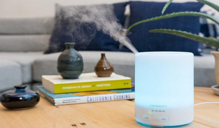 Những sản phẩm làm sạch không khí nên có trong gia đình - Ảnh 2.