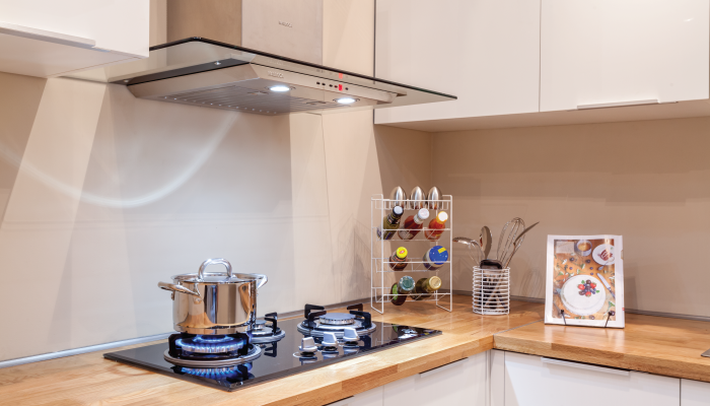 Những sản phẩm làm sạch không khí nên có trong gia đình - Ảnh 4.