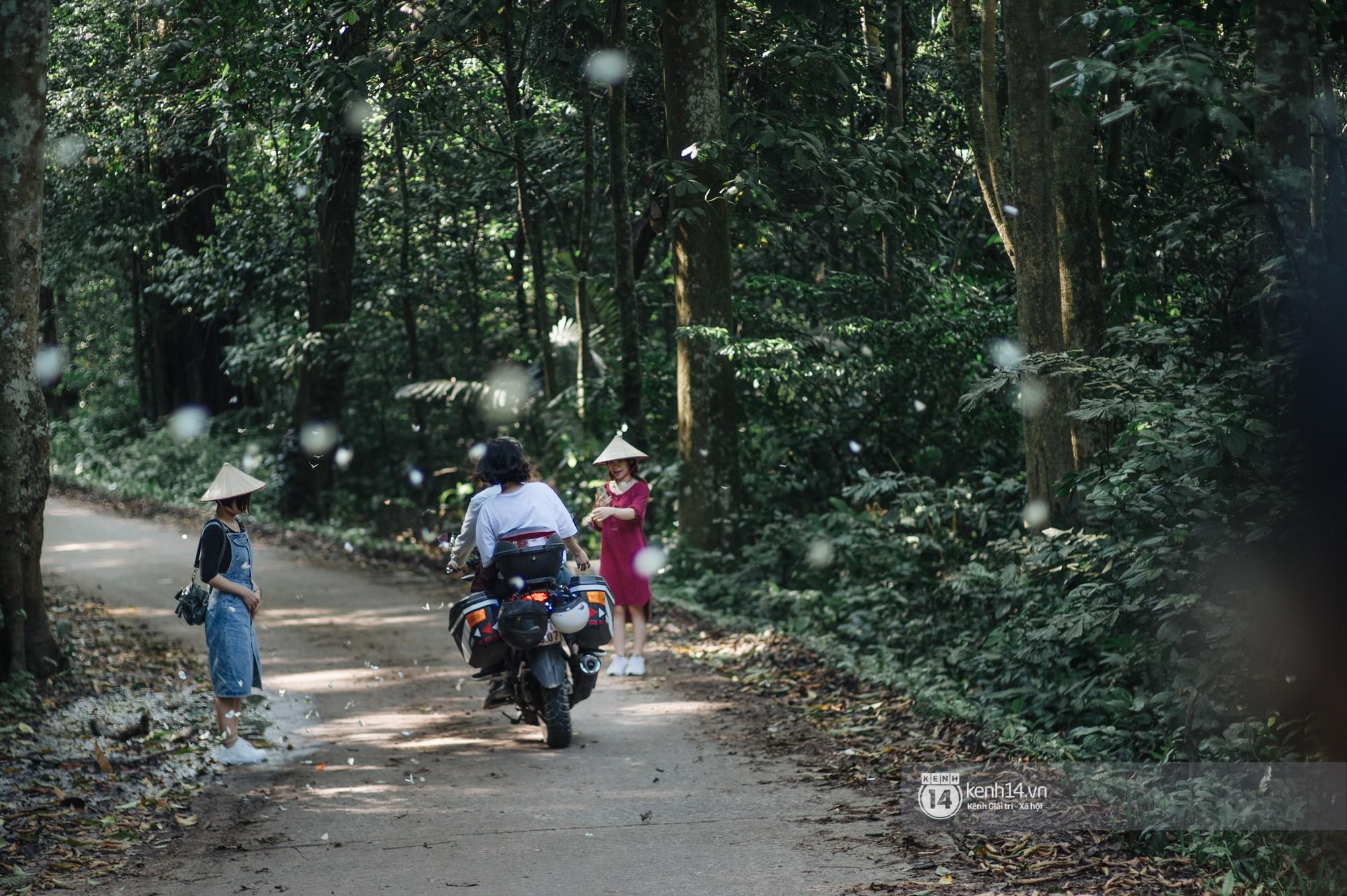 Chuyến đi Cúc Phương những ngày cuối mùa bướm rừng: Chốn thần tiên có vẻ đẹp riêng của sự muộn màng - Ảnh 4.