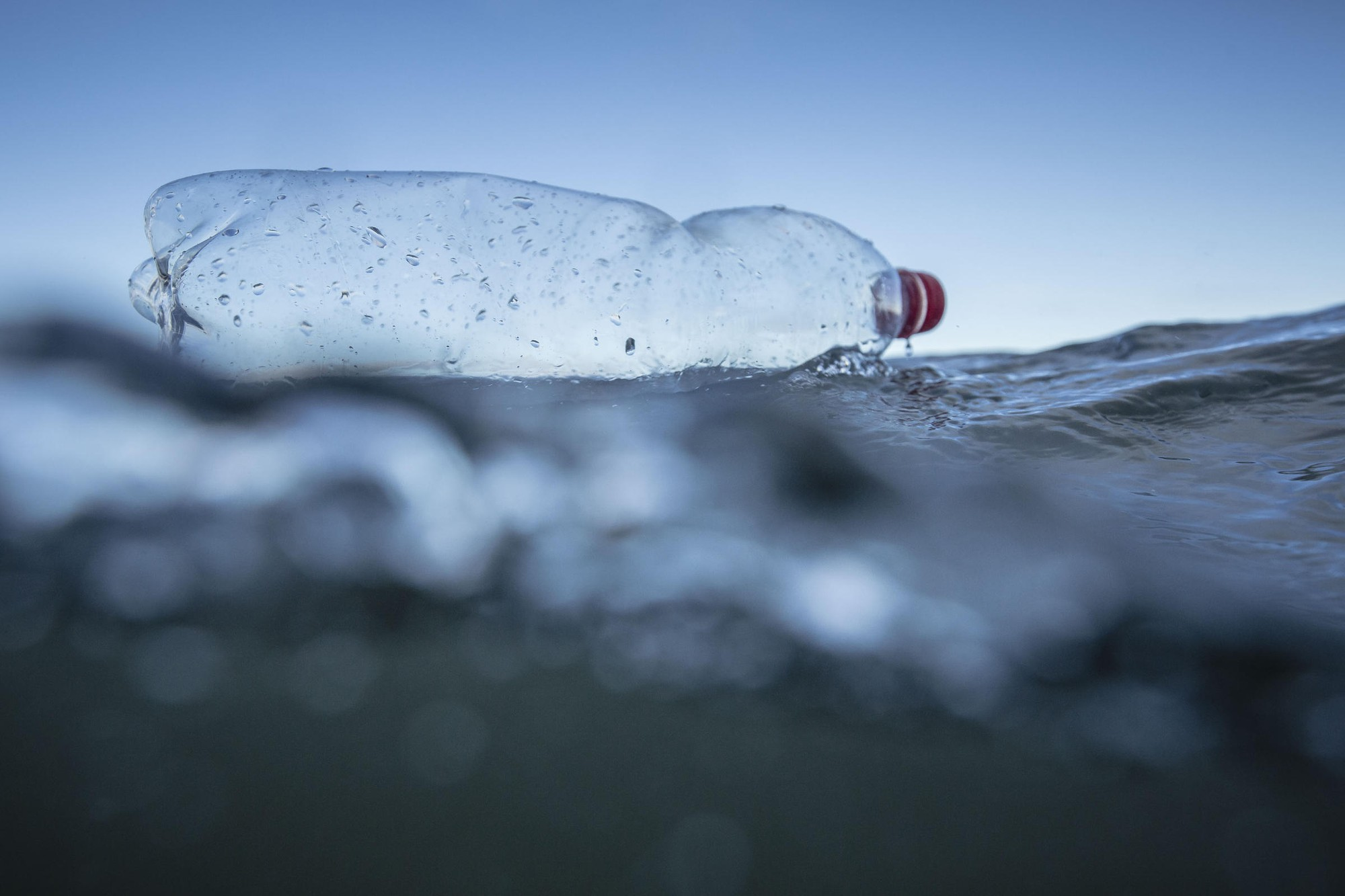 Phát hiện mới này có thể sớm khiến rác nhựa trên đại dương bay màu như búng tay bằng Găng Vô Cực trong Endgame - Ảnh 3.