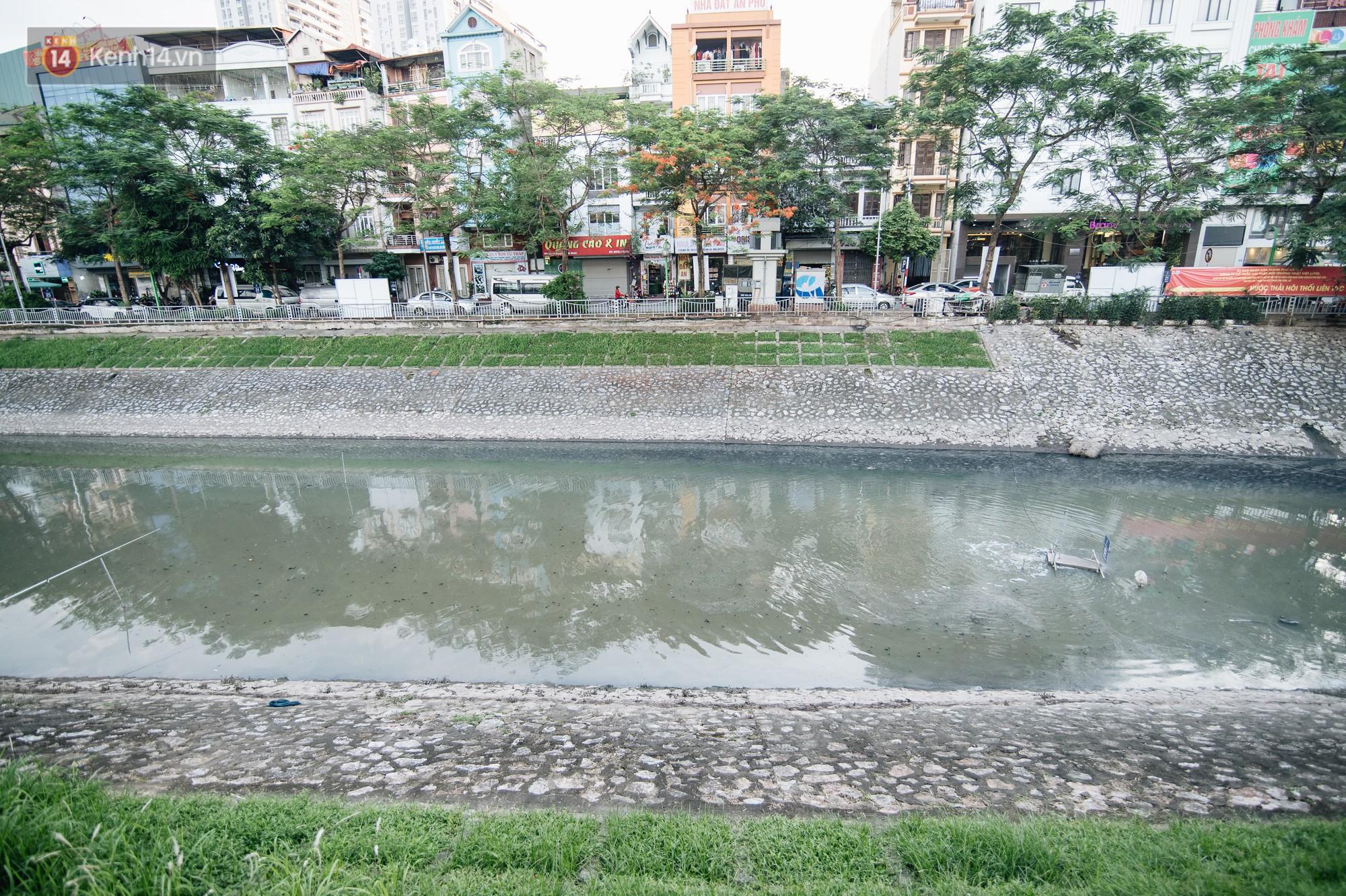 Sông Tô Lịch đổi màu sau khi làm sạch bằng công nghệ Nhật Bản: Hoa lau xanh mướt, người dân thư thả câu cá - Ảnh 4.