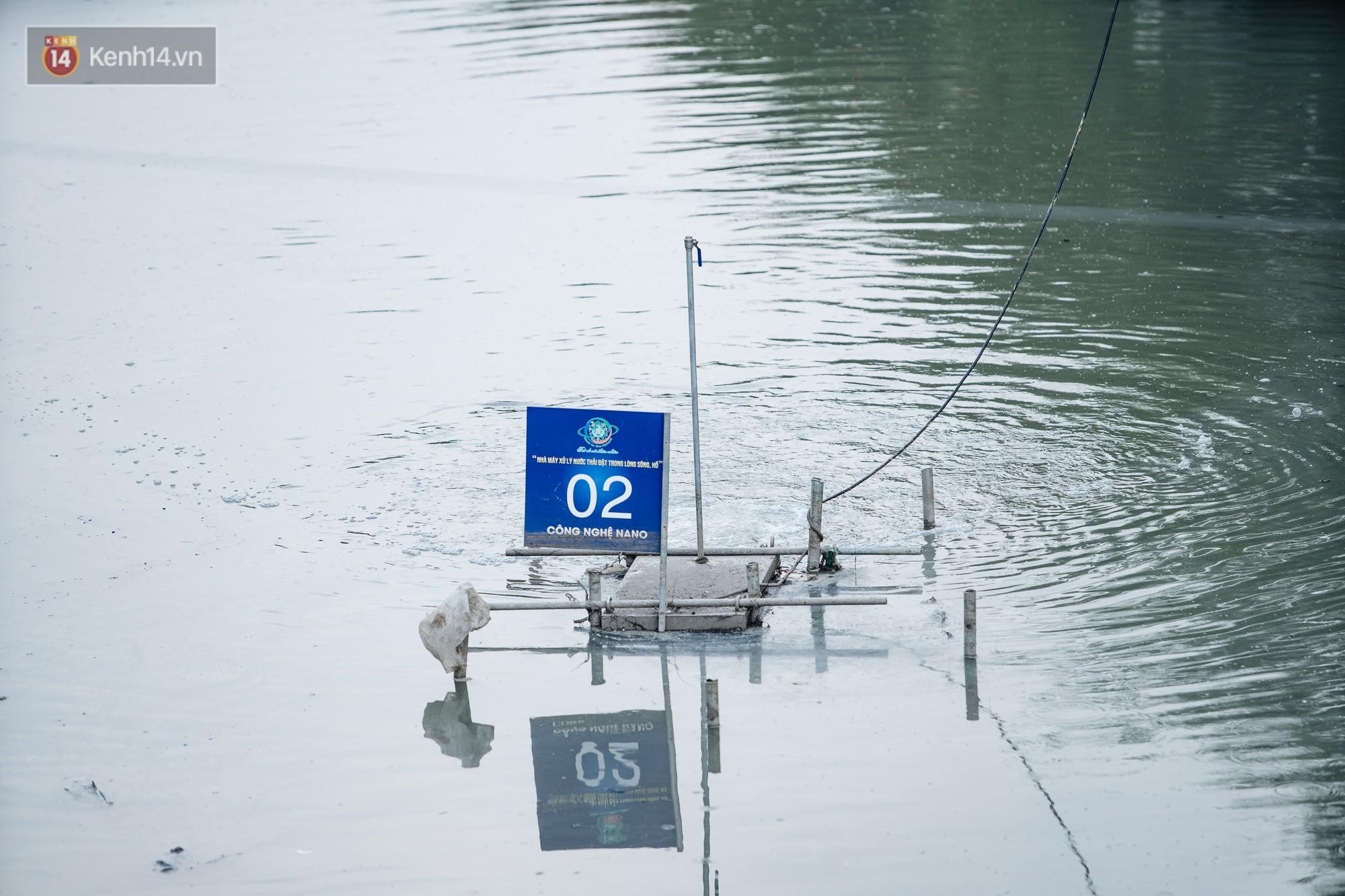 Sông Tô Lịch đổi màu sau khi làm sạch bằng công nghệ Nhật Bản: Hoa lau xanh mướt, người dân thư thả câu cá - Ảnh 3.