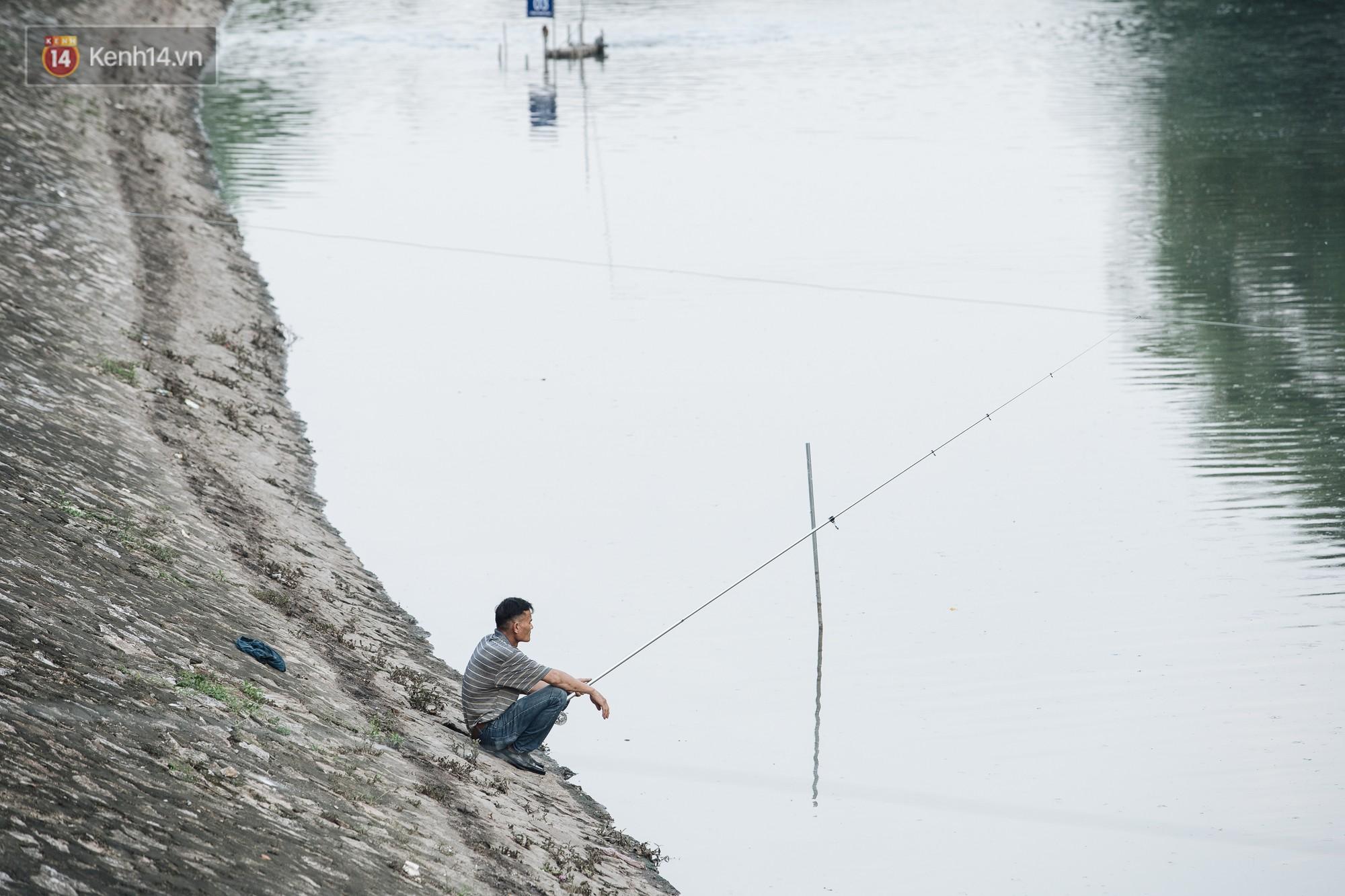 Sông Tô Lịch đổi màu sau khi làm sạch bằng công nghệ Nhật Bản: Hoa lau xanh mướt, người dân thư thả câu cá - Ảnh 13.