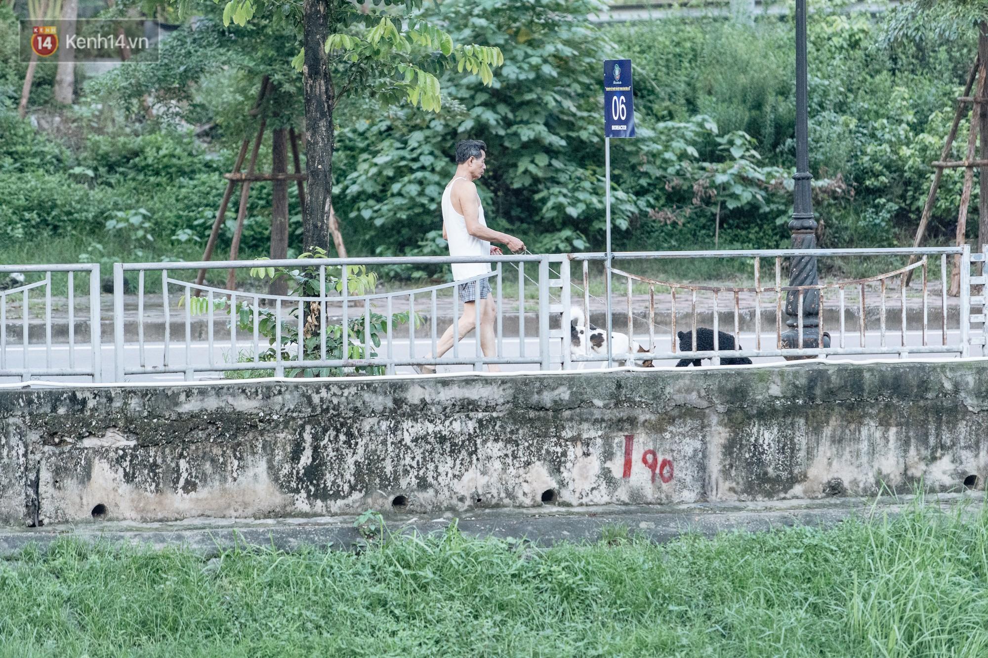 Sông Tô Lịch đổi màu sau khi làm sạch bằng công nghệ Nhật Bản: Hoa lau xanh mướt, người dân thư thả câu cá - Ảnh 12.