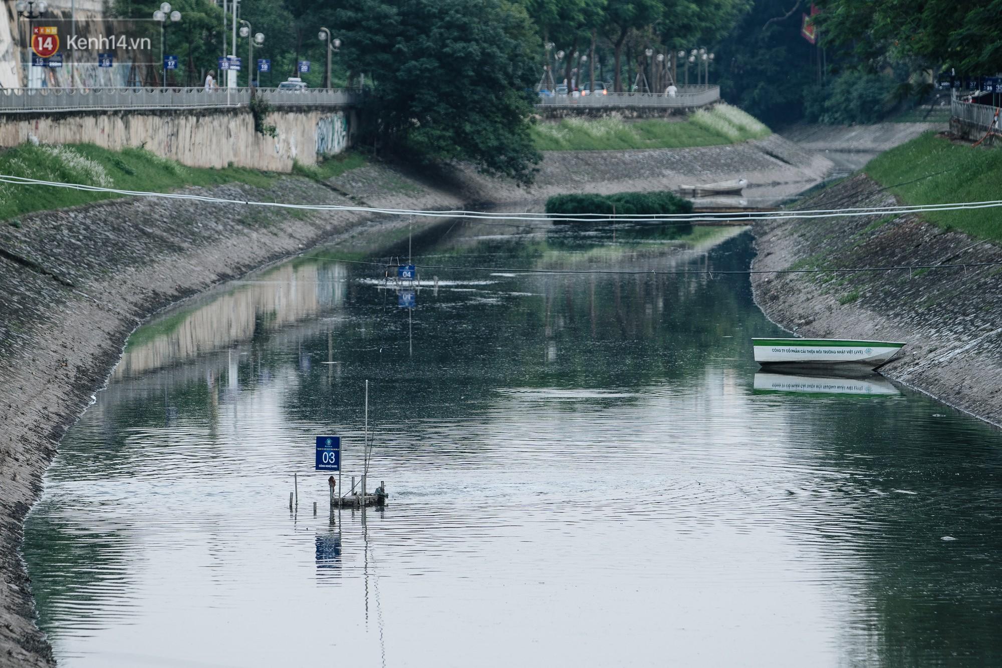 Sông Tô Lịch đổi màu sau khi làm sạch bằng công nghệ Nhật Bản: Hoa lau xanh mướt, người dân thư thả câu cá - Ảnh 2.