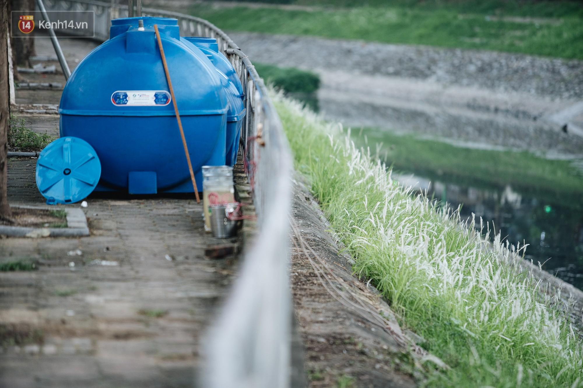 Sông Tô Lịch đổi màu sau khi làm sạch bằng công nghệ Nhật Bản: Hoa lau xanh mướt, người dân thư thả câu cá - Ảnh 7.