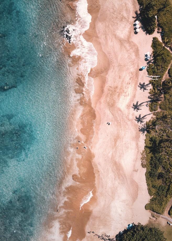 """Du khách """"ngã ngửa"""" toàn tập khi đến """"thiên đường biển"""" Hawaii vì tất cả những hình ảnh hiền hòa, thư giãn từng thấy trên mạng giờ chỉ còn là mộng tưởng - Ảnh 8."""