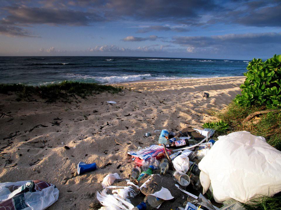 """Du khách """"ngã ngửa"""" toàn tập khi đến """"thiên đường biển"""" Hawaii vì tất cả những hình ảnh hiền hòa, thư giãn từng thấy trên mạng giờ chỉ còn là mộng tưởng - Ảnh 12."""