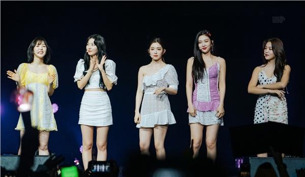 Outfit của các thành viên còn lại cũng không ổn hơn là bao. Ngoại trừ Seulgi, Irene, trang phục của Wendy cũng chẳng khác gì váy của trẻ con, còn em út Yeri lại được cho diện một chiếc váy hai dây ngắn cũn cỡn dễ gặp sự cố. Outfit của cả 5 thành viên đều không có tính liên kết với nhau.