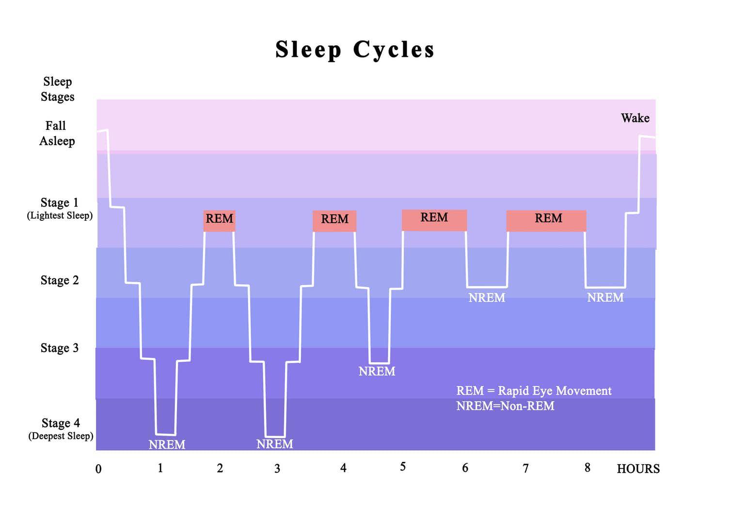 Sự thật về cái nút hoãn báo thức (Snooze) cứu vãn giấc ngủ mà nhiều người vẫn đang sử dụng - Ảnh 2.