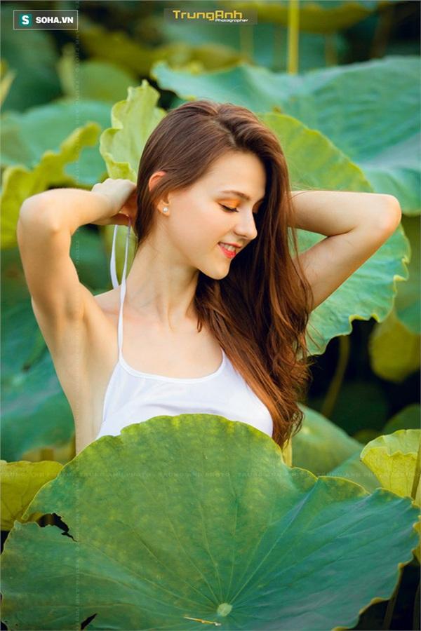 Vẻ đẹp khó rời mắt của cô gái nước ngoài bên hoa sen. Ảnh: Nguyễn Trung Anh.