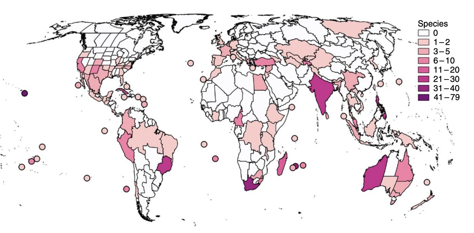 Cây cối sẽ tuyệt chủng ít hơn hiện giờ đến 500 lần nếu loài người không tồn tại - Ảnh 3.