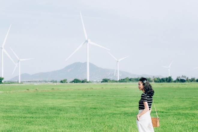 Cánh đồng quạt gió và vườn dâu Ba Mọi tại Ninh Thuận: Hai địa điểm check-in siêu to khổng lồ, lại còn miễn phí nữa chứ! - Ảnh 2.