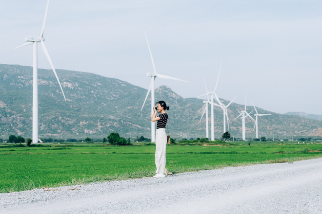 Cánh đồng quạt gió và vườn dâu Ba Mọi tại Ninh Thuận: Hai địa điểm check-in siêu to khổng lồ, lại còn miễn phí nữa chứ! - Ảnh 4.
