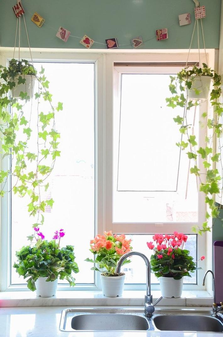 Những cách trang trí cửa sổ đơn giản mà đẹp bất ngờ không phải ai cũng biết - Ảnh 5.