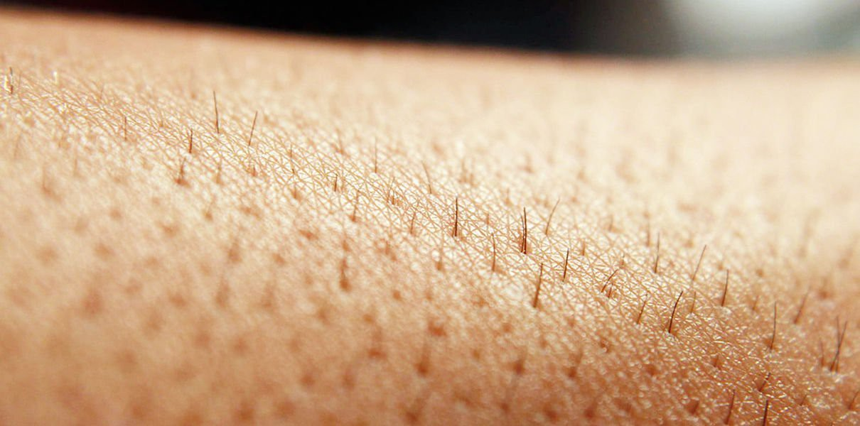 Những điều bạn cần biết khi Wax lông