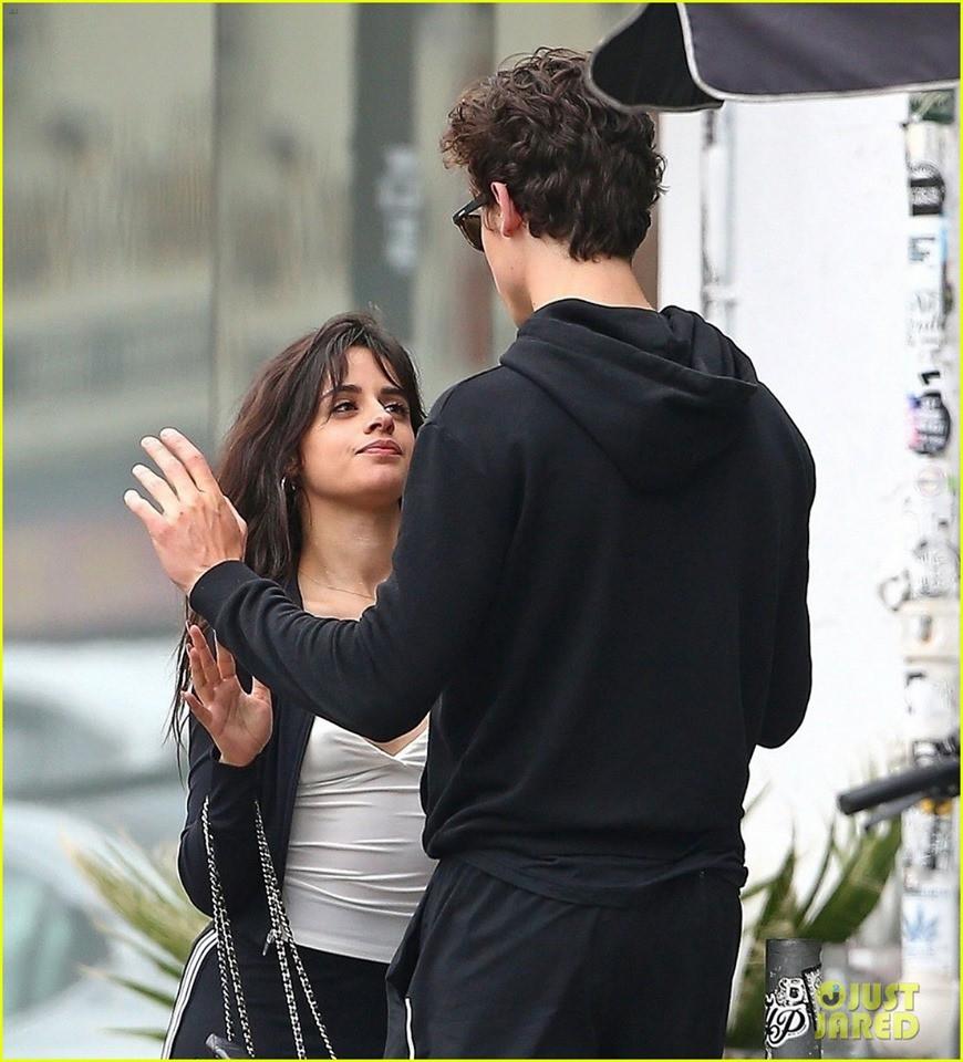 Một mực chối bay chối biến, Shawn Mendes và Camila Cabello cứ ngang nhiên ôm ấp, nắm tay thế này thì ai tin? - Ảnh 6.