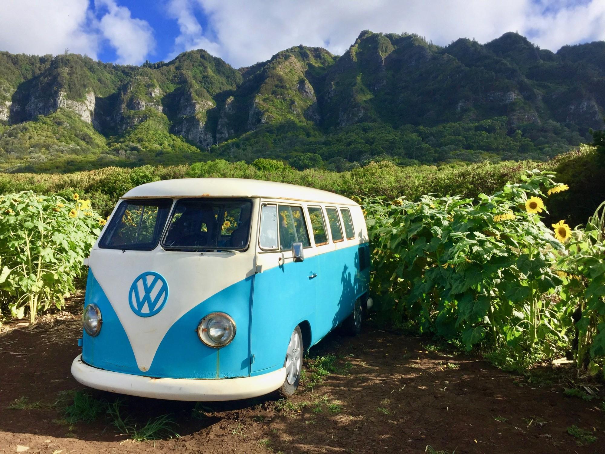 Dù YG có giữ bí mật tới mức nào thì lịch trình ở Hawaii của BLACKPINK vẫn được tiết lộ gần như toàn bộ bởi cô nàng này - Ảnh 8.