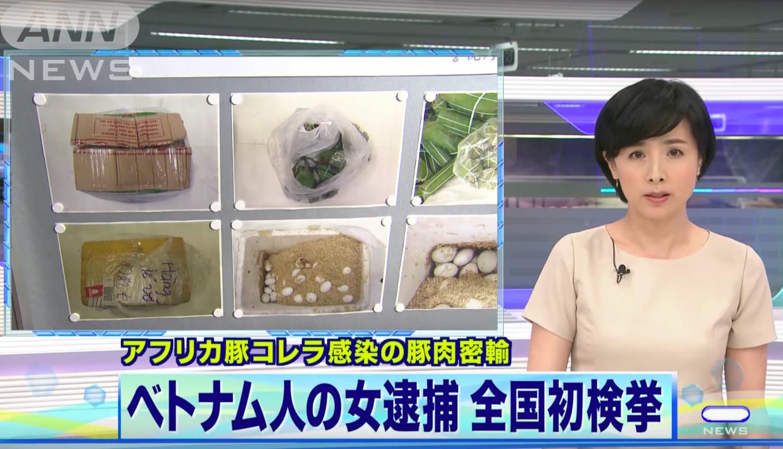 Nữ sinh Việt mang 360 trứng vịt lộn và 10kg nem chua vào Nhật Bản sẽ đối mặt với án phạt nào? - Ảnh 1.