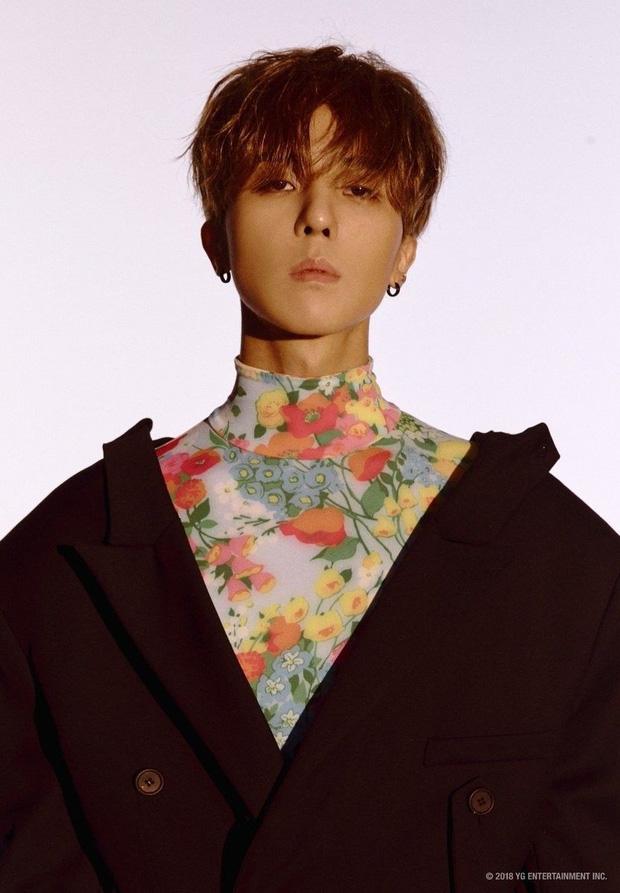 Hội idol thuộc diện học sinh giỏi của Kpop: Hoạt động nhóm đã nổi bật, đi solo cũng lập toàn thành tích khủng - Ảnh 5.