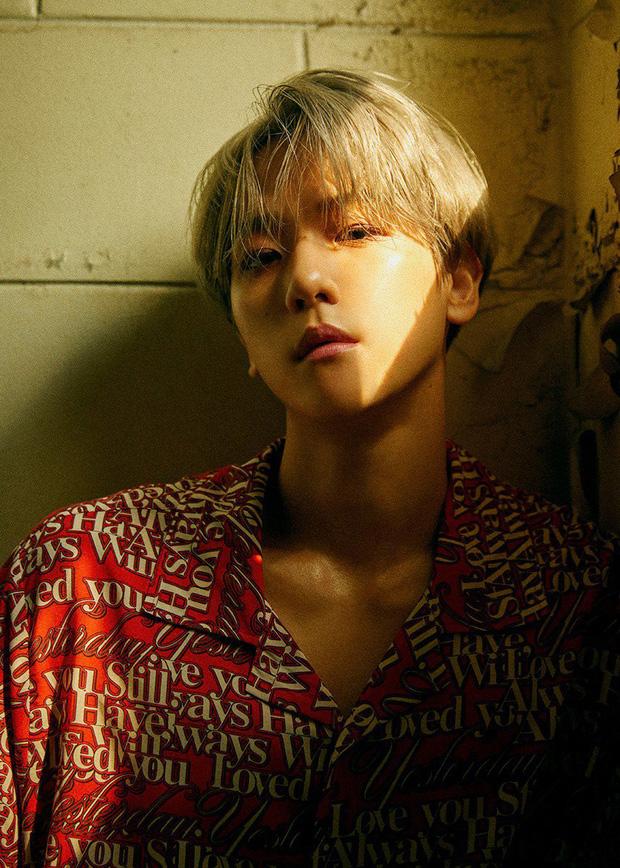 Hội idol thuộc diện học sinh giỏi của Kpop: Hoạt động nhóm đã nổi bật, đi solo cũng lập toàn thành tích khủng - Ảnh 1.
