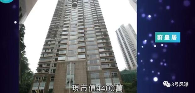 Phân chia tài sản sau ly hôn, netizen mới ngã ngửa hóa ra Dương Mịch sở hữu khối tài sản siêu to khổng lồ - Ảnh 4.