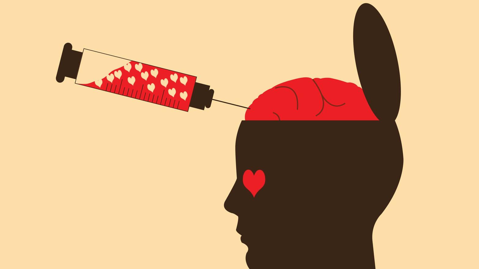 151017-siegel-brain-love-tease_swkg1r